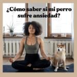 ¿Cómo puedo saber si mi perro sufre de ansiedad?