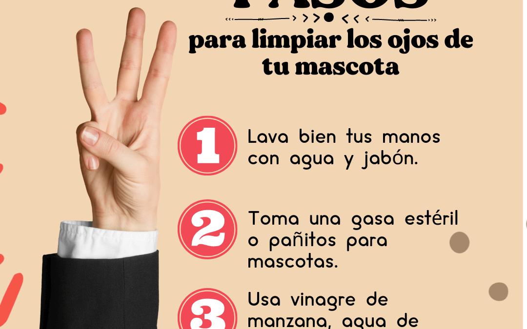 3 Pasos para limpiar los ojos de tu mascota